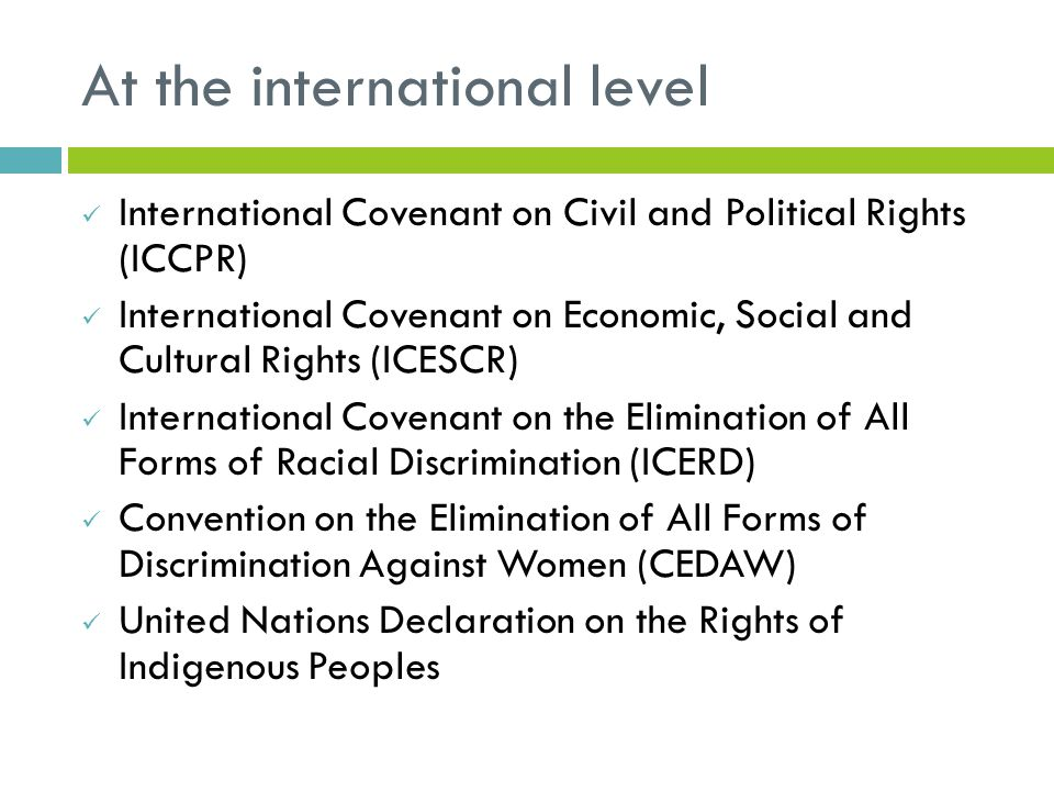 At the international level International Covenant on Civil and Political Rights (ICCPR) International Covenant on Economic, Social and Cultural Rights (ICESCR) International Covenant on the Elimination of All Forms of Racial Discrimination (ICERD) Convention on the Elimination of All Forms of Discrimination Against Women (CEDAW) United Nations Declaration on the Rights of Indigenous Peoples
