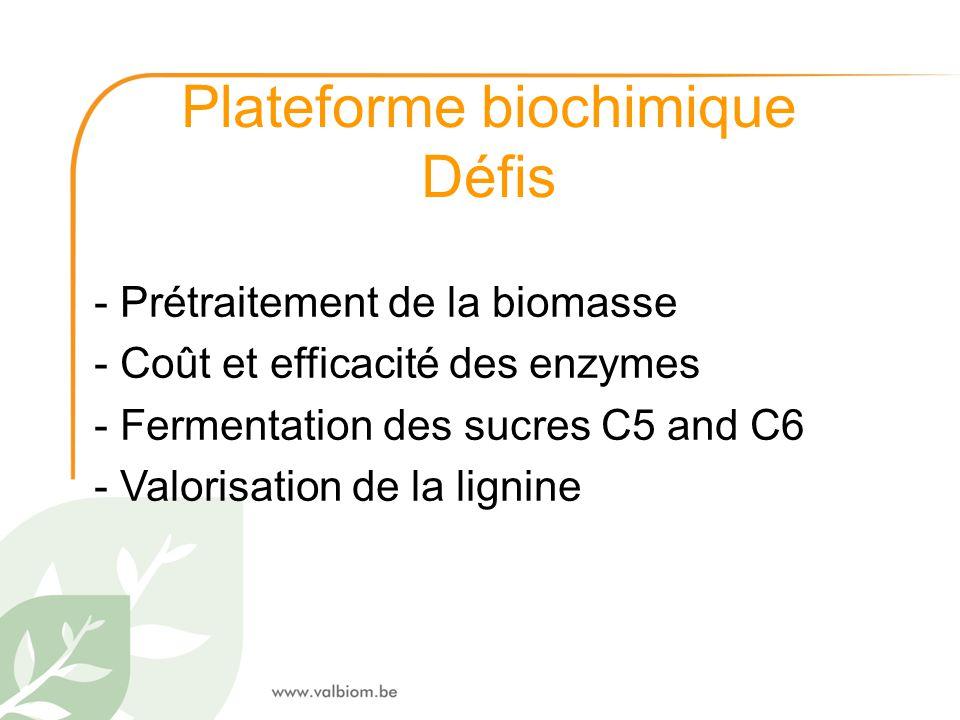 Plateforme biochimique Défis - Prétraitement de la biomasse - Coût et efficacité des enzymes - Fermentation des sucres C5 and C6 - Valorisation de la