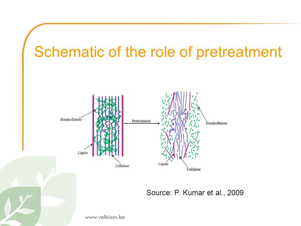 Schematic of the role of pretreatment Source: P. Kumar et al., 2009