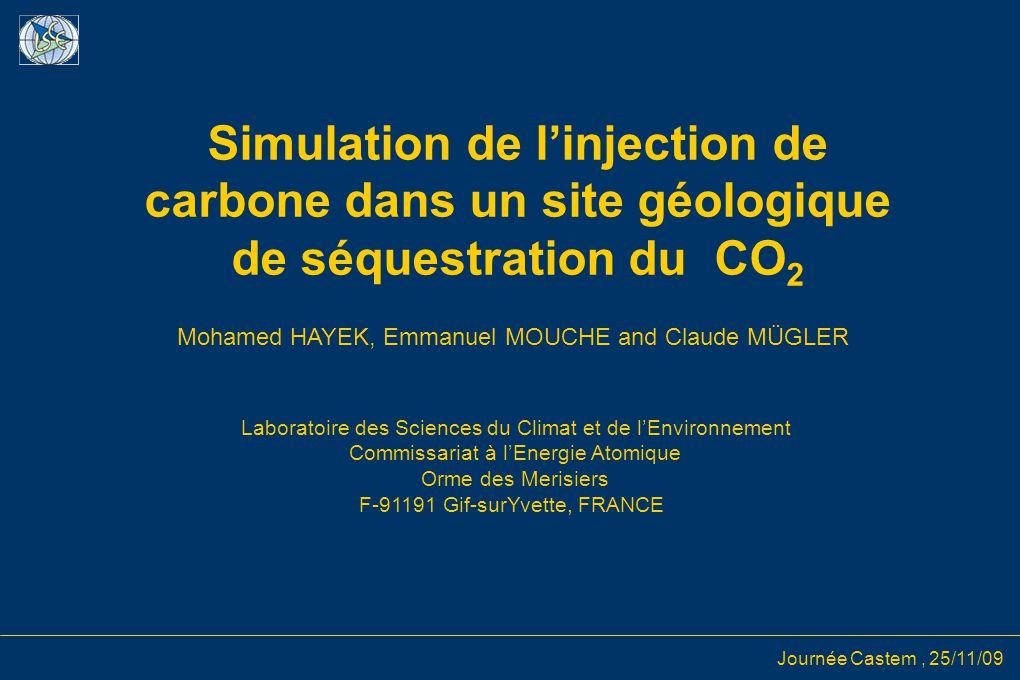 Journée Castem, 25/11/09 Simulation de l'injection de carbone dans un site géologique de séquestration du CO 2 Mohamed HAYEK, Emmanuel MOUCHE and Clau