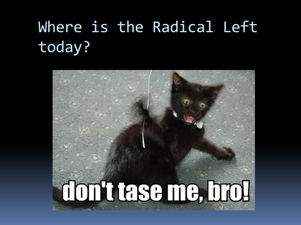 Where is the Radical Left today