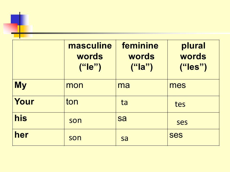 masculine words ( le ) feminine words ( la ) plural words ( les ) Mymonmames Yourton hissa herses ta tes son sa ses