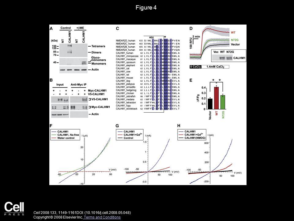 Figure 4 Cell 2008 133, 1149-1161DOI: (10.1016/j.cell.2008.05.048) Copyright © 2008 Elsevier Inc.