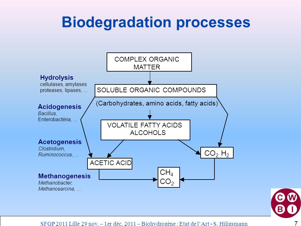 COMPLEX ORGANIC MATTER SOLUBLE ORGANIC COMPOUNDS VOLATILE FATTY ACIDS ALCOHOLS Hydrolysis cellulases, amylases proteases, lipases, … Acidogenesis Baci