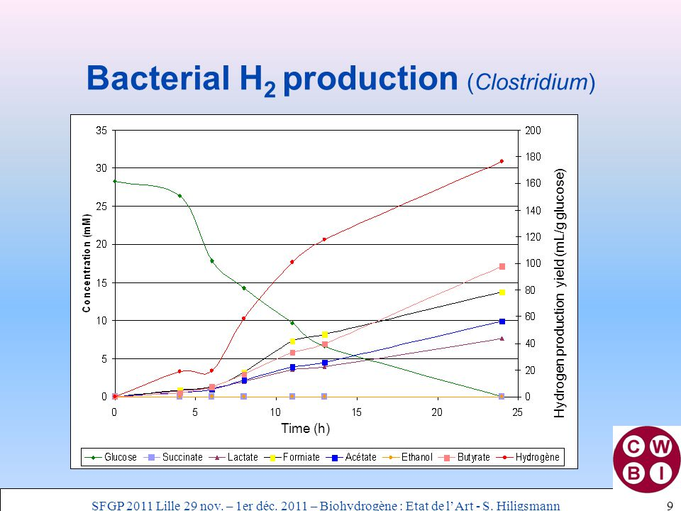 Bacterial H 2 production (Clostridium) 9 Hydrogen production yield (mL/g glucose) Time (h) SFGP 2011 Lille 29 nov. – 1er déc. 2011 – Biohydrogène : Et