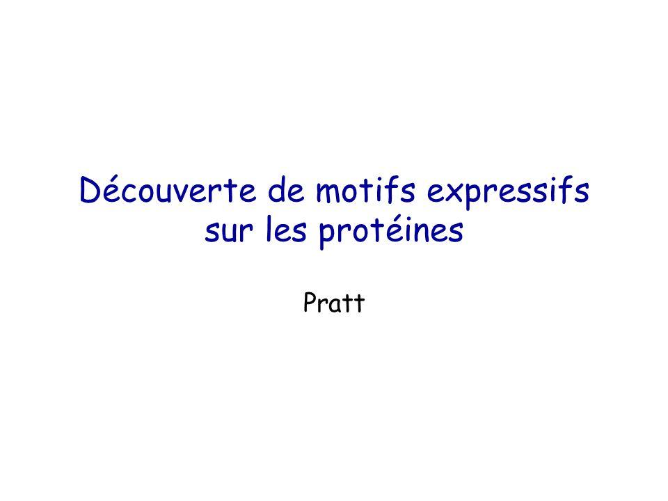 Découverte de motifs expressifs sur les protéines Pratt
