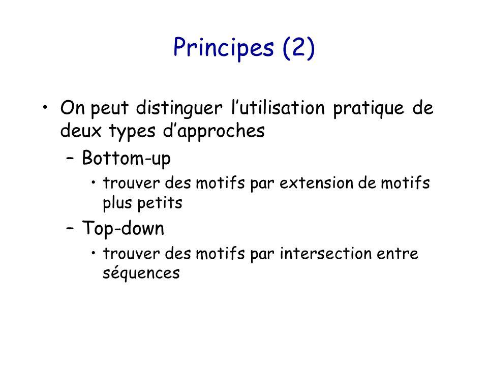 Principes (2) On peut distinguer l'utilisation pratique de deux types d'approches –Bottom-up trouver des motifs par extension de motifs plus petits –Top-down trouver des motifs par intersection entre séquences