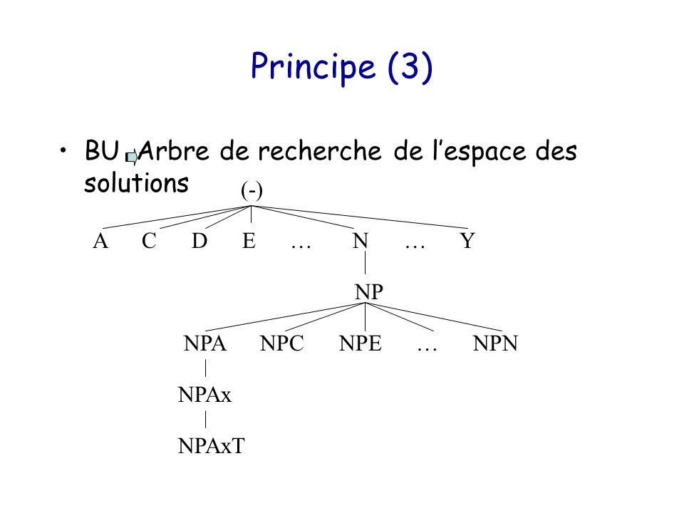 Principe (3) BU Arbre de recherche de l'espace des solutions NP (-) A C D E … N … Y NPA NPC NPE … NPN NPAx NPAxT
