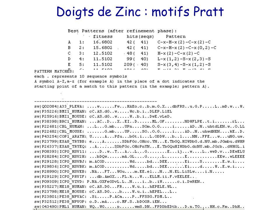 Doigts de Zinc : motifs Pratt