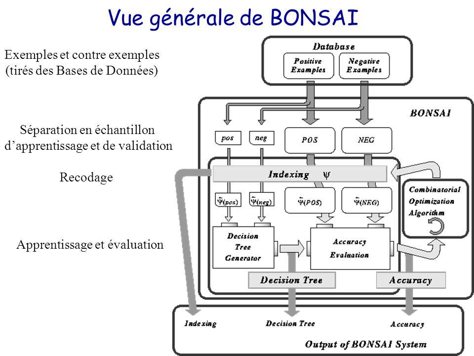 Vue générale de BONSAI Exemples et contre exemples (tirés des Bases de Données) Séparation en échantillon d'apprentissage et de validation Recodage Apprentissage et évaluation