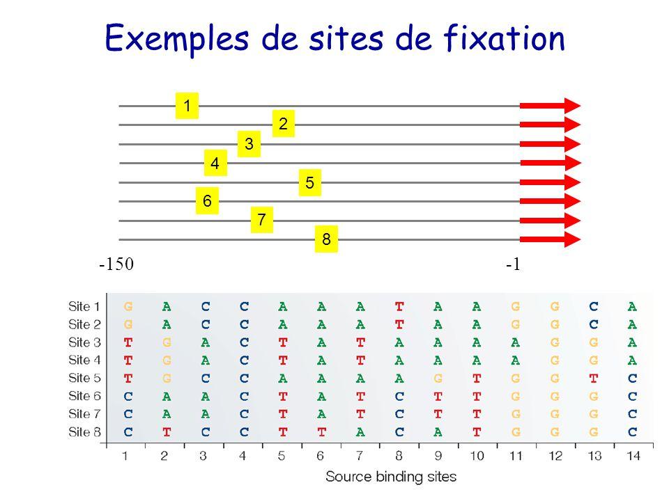 Exemples de sites de fixation -150 1 2 3 4 5 6 7 8