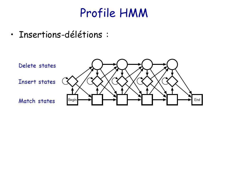 Profile HMM Insertions-délétions : Match states Insert states Delete states