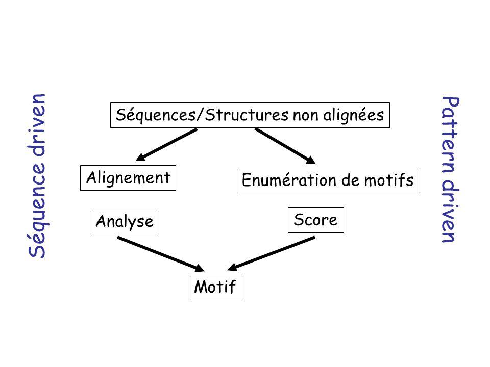Séquences/Structures non alignées Alignement Analyse Enumération de motifs Score Motif Séquence driven Pattern driven