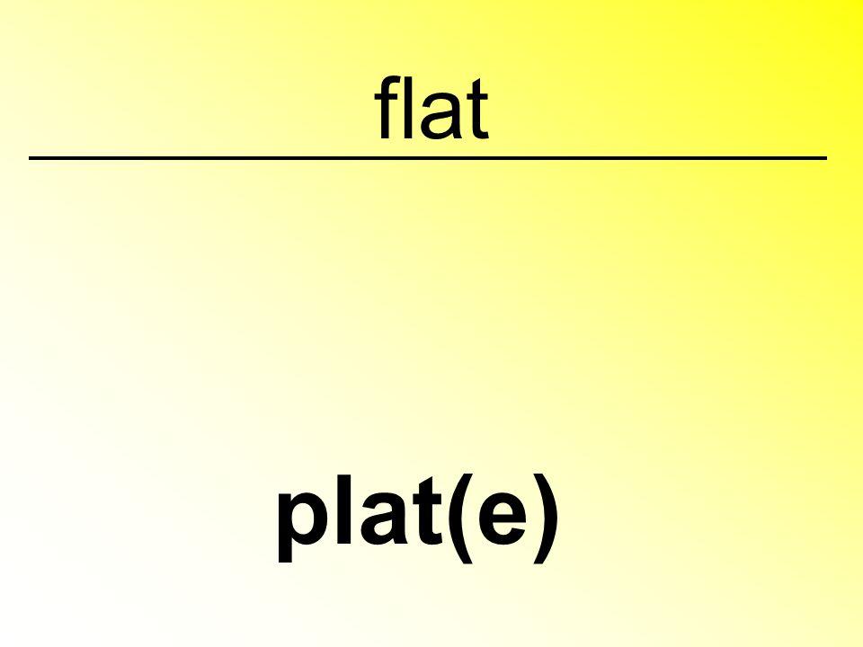 flat plat(e)