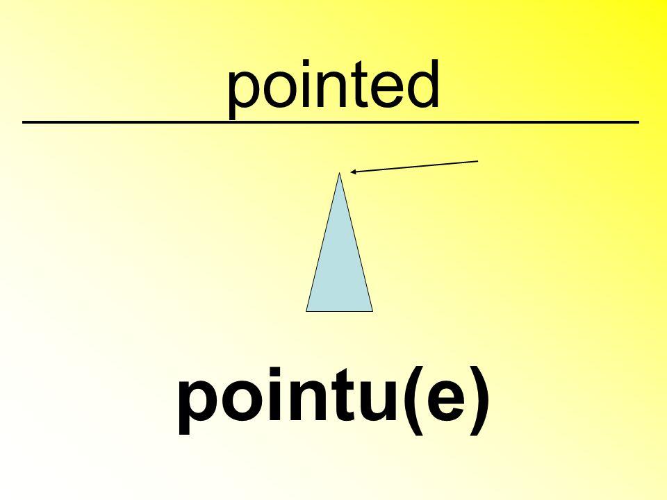 pointed pointu(e)