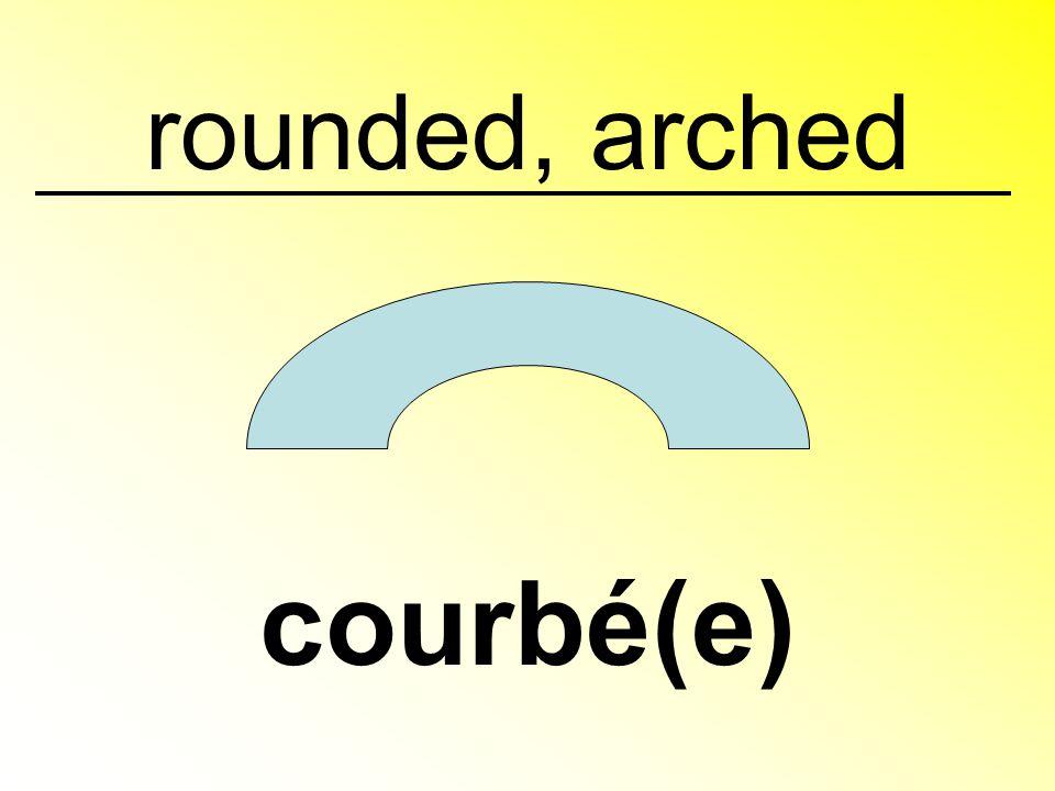 straight, upright droit(e)
