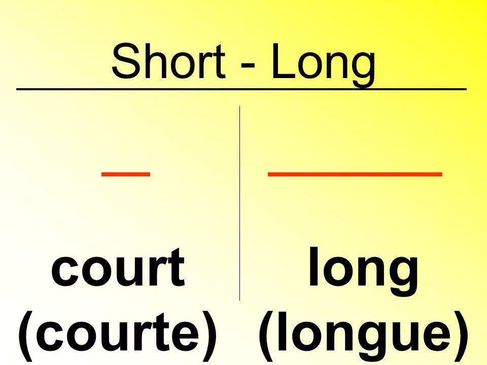Big grand (grande) petit (petite) Small, short