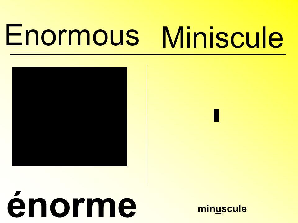 Enormous énorme minuscule Miniscule