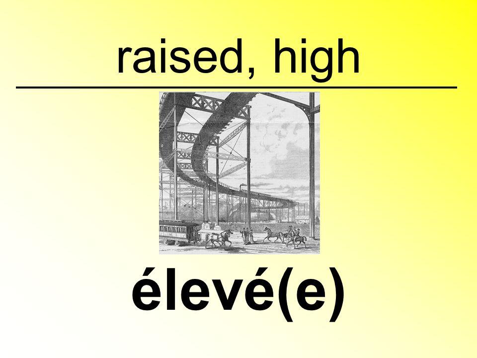 raised, high élevé(e)