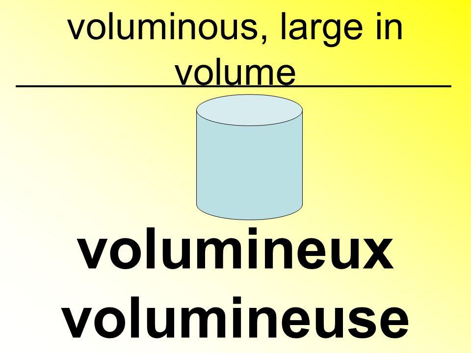 voluminous, large in volume volumineux volumineuse