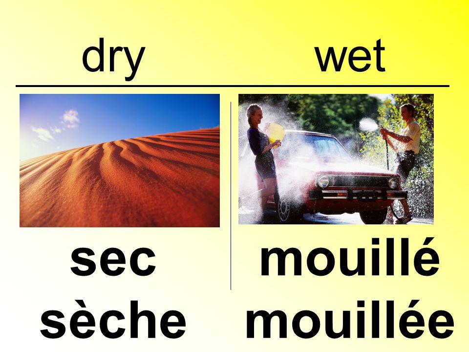 dry sec sèche mouillé mouillée wet