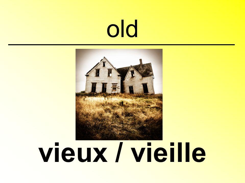 old vieux / vieille