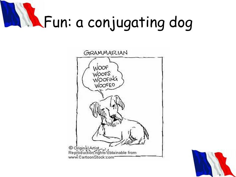 Fun: a conjugating dog
