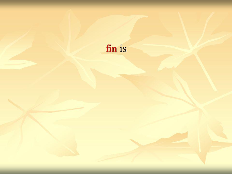fin is