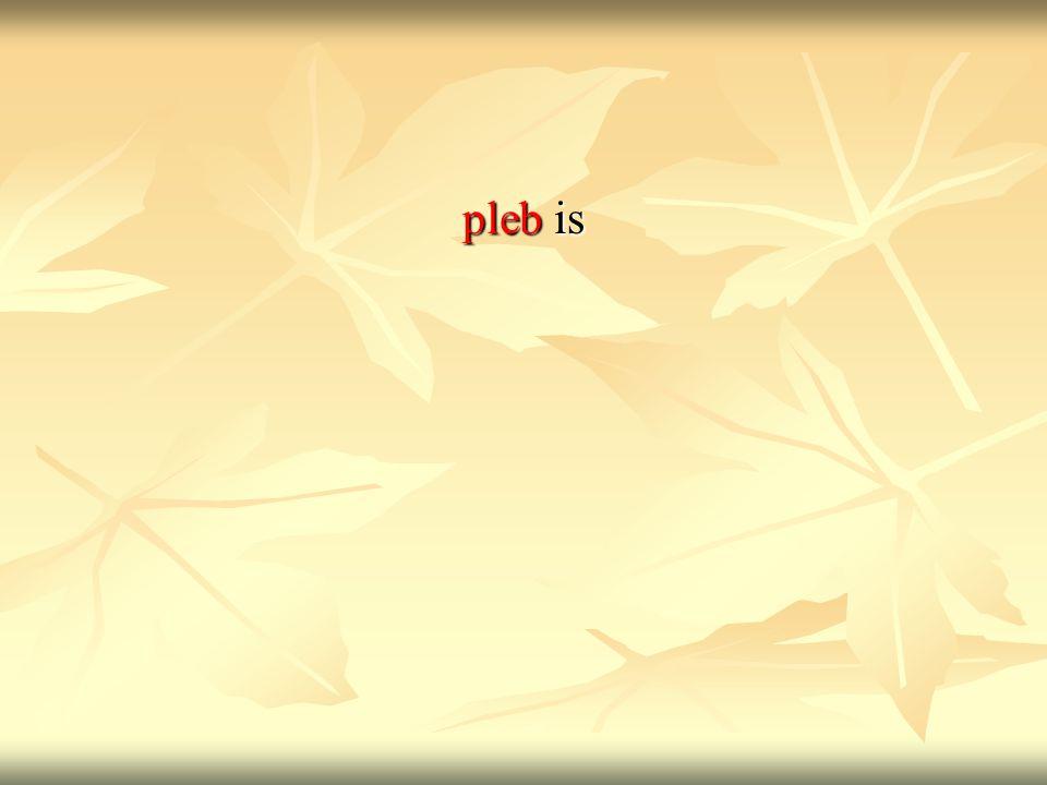 pleb is
