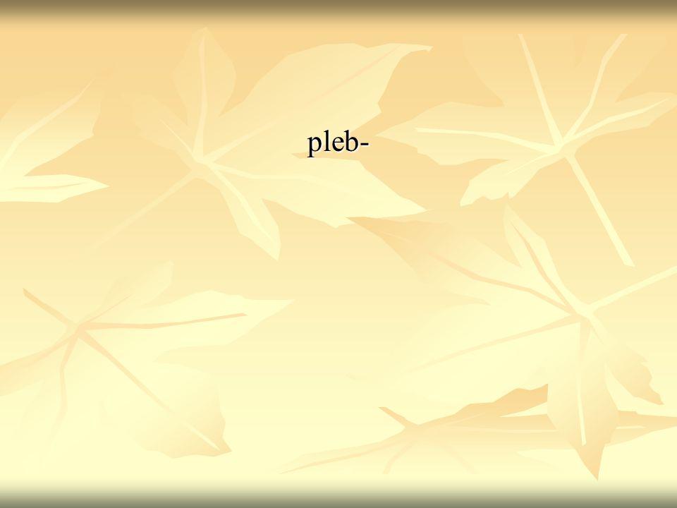 pleb-