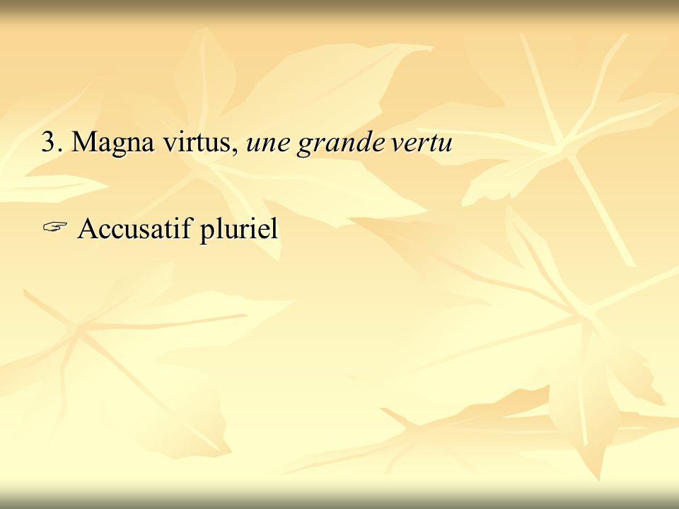 3. Magna virtus, une grande vertu  Accusatif pluriel