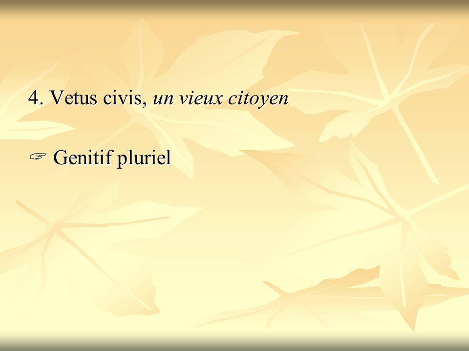 4. Vetus civis, un vieux citoyen  Genitif pluriel