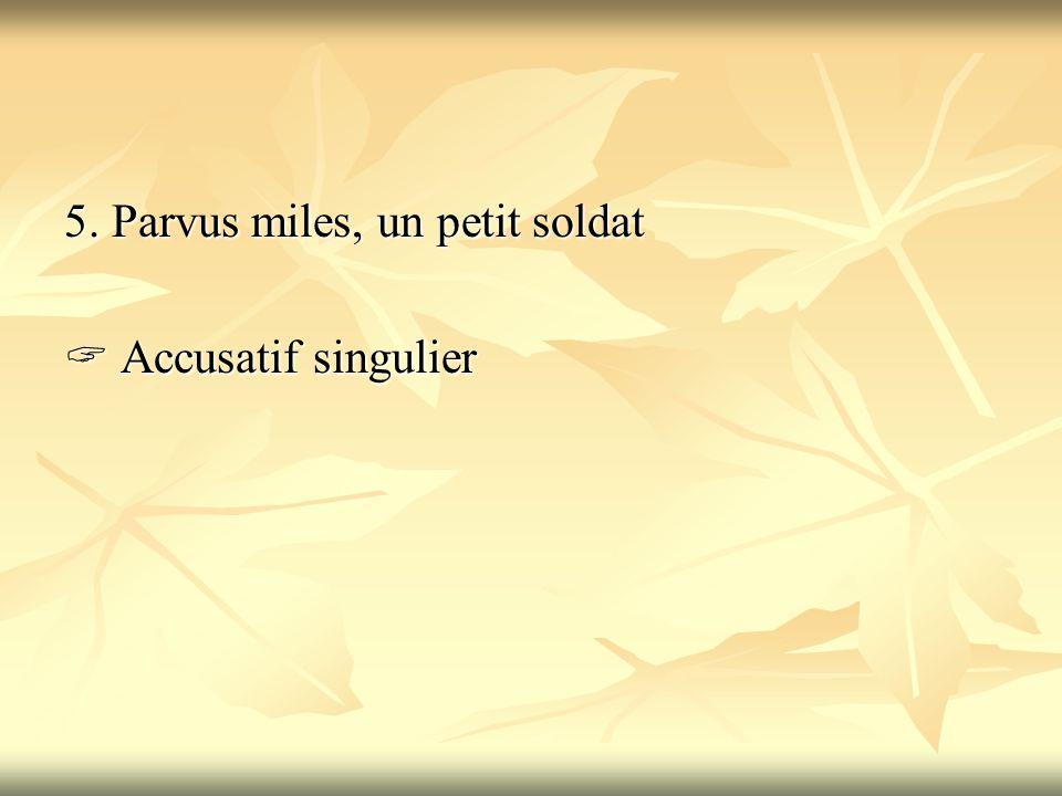 5. Parvus miles, un petit soldat  Accusatif singulier
