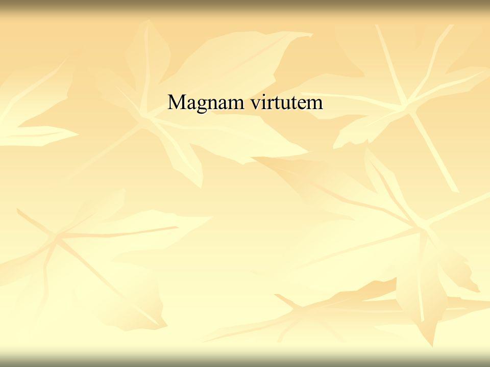 Magnam virtutem