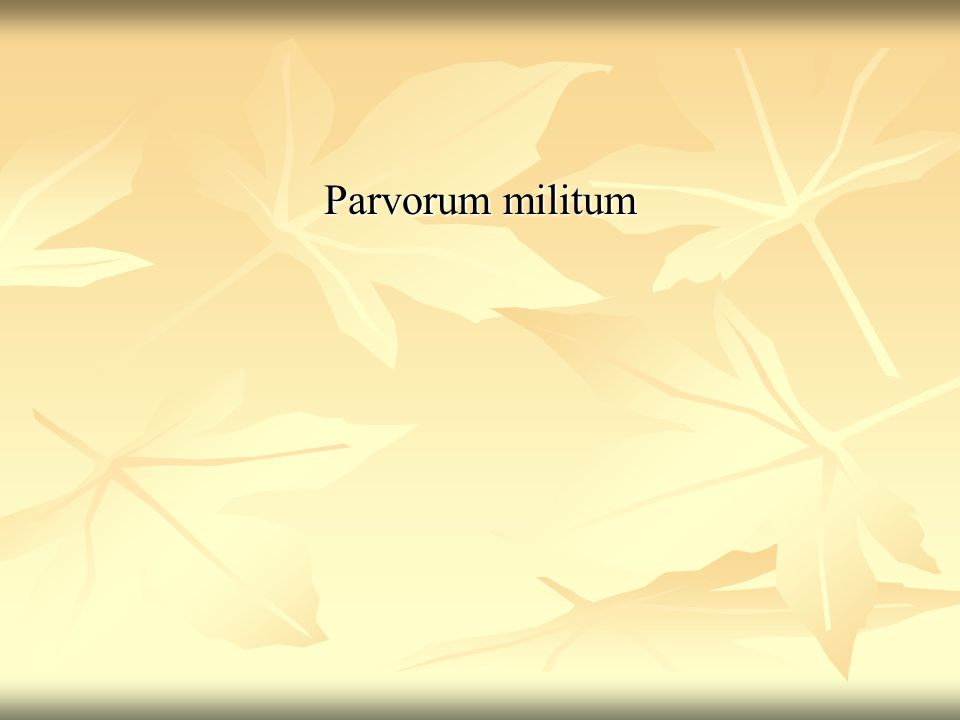 Parvorum militum