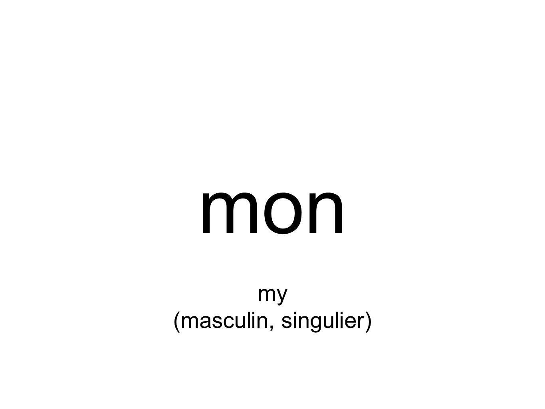 mon my (masculin, singulier)