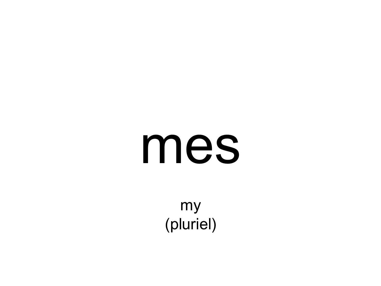 mes my (pluriel)