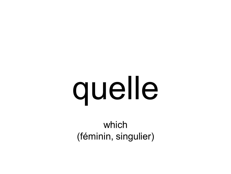 quelle which (féminin, singulier)