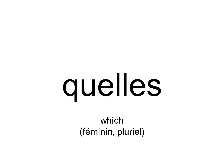 quelles which (féminin, pluriel)