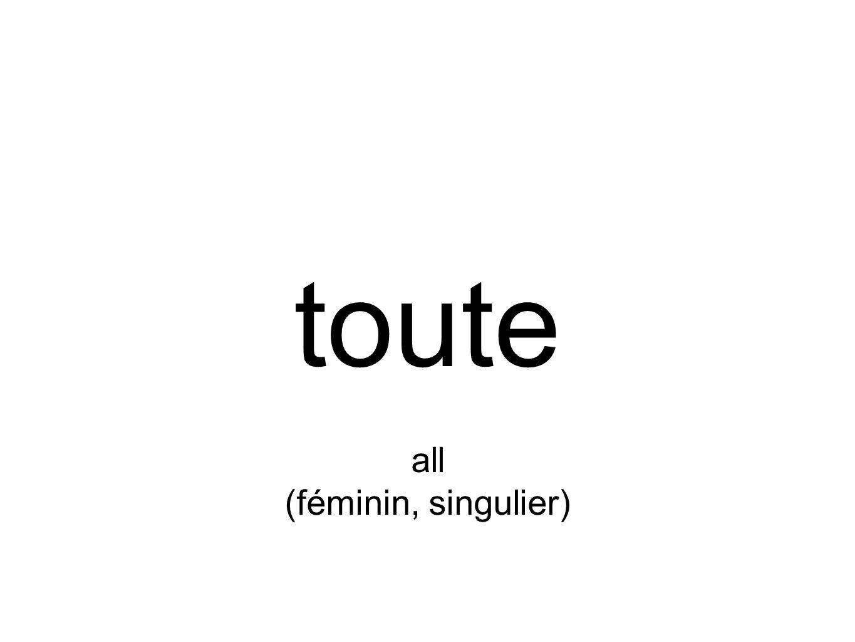 toute all (féminin, singulier)