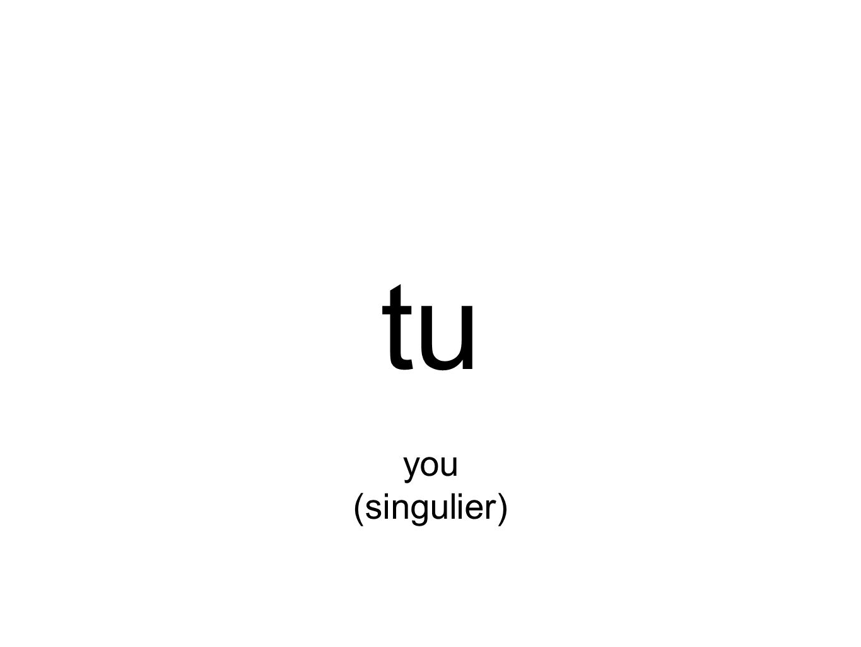 tu you (singulier)
