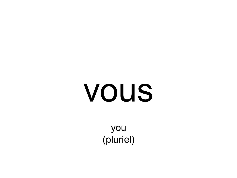 vous you (pluriel)