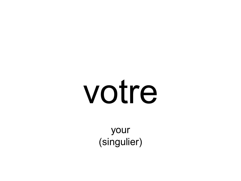 votre your (singulier)