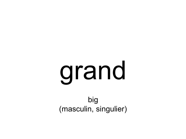 grand big (masculin, singulier)