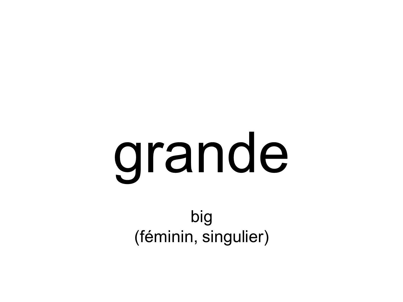 grande big (féminin, singulier)