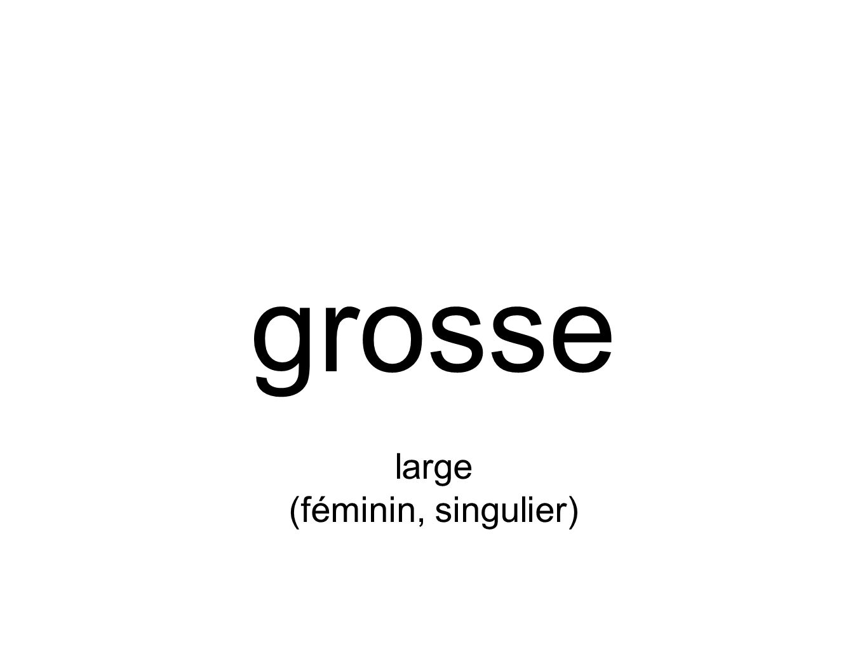 grosse large (féminin, singulier)