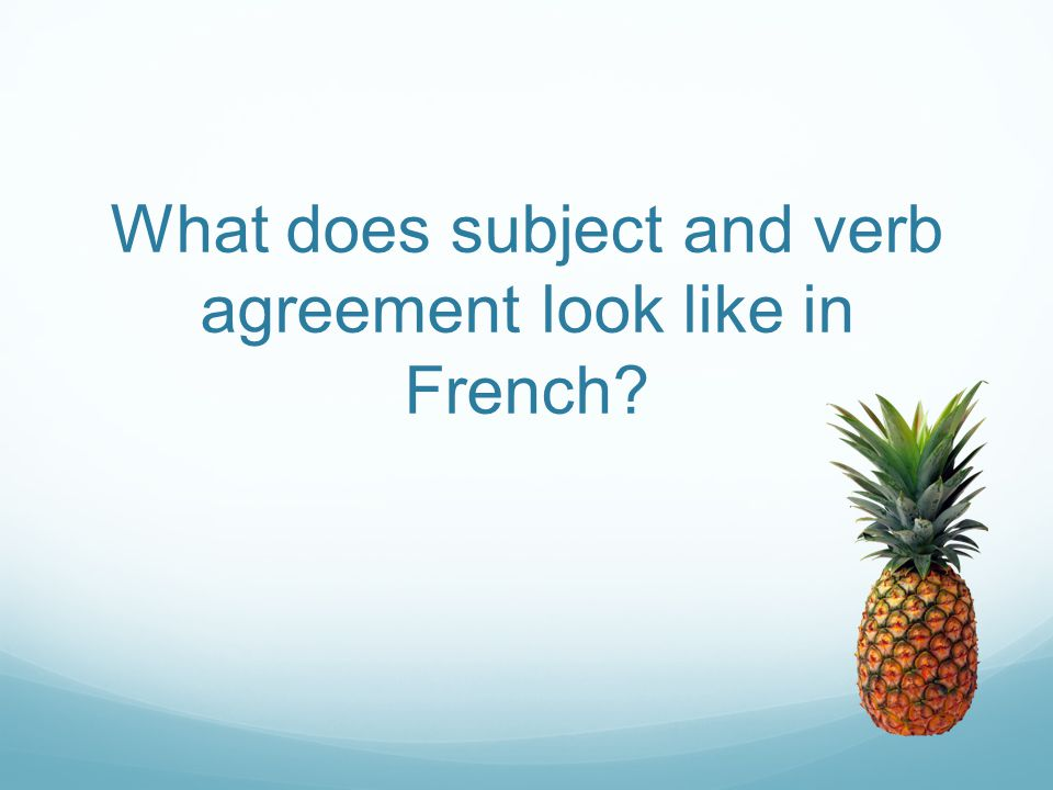 What does subject and verb agreement look like in French?