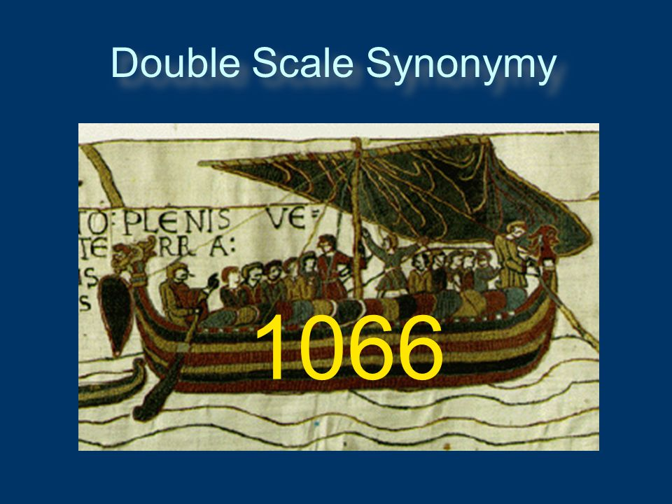 Double Scale Synonymy 1066