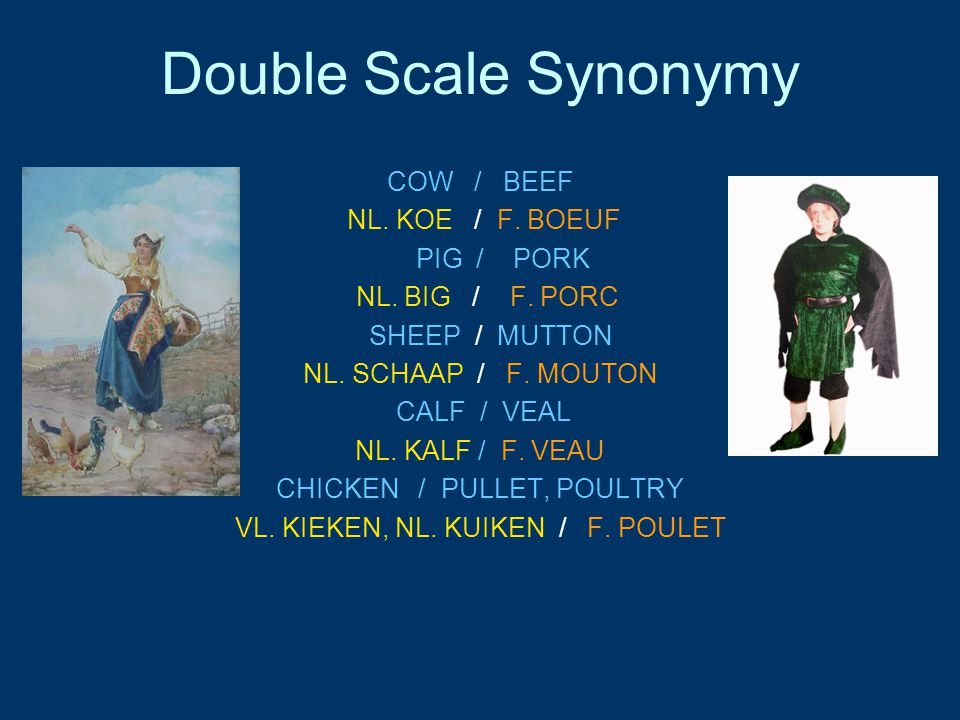 Double Scale Synonymy COW / BEEF NL. KOE / F. BOEUF PIG / PORK NL. BIG / F. PORC SHEEP / MUTTON NL. SCHAAP / F. MOUTON CALF / VEAL NL. KALF / F. VEAU