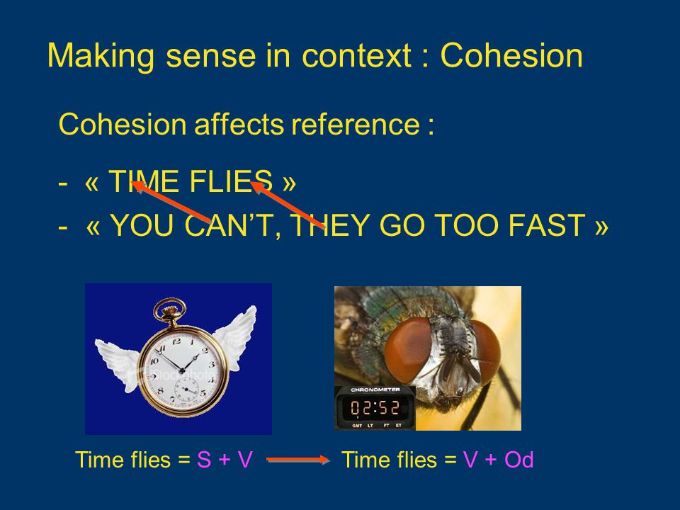 Making sense in context : Cohesion Cohesion affects reference : -« TIME FLIES » - « YOU CAN'T, THEY GO TOO FAST » Time flies = S + VTime flies = V + Od
